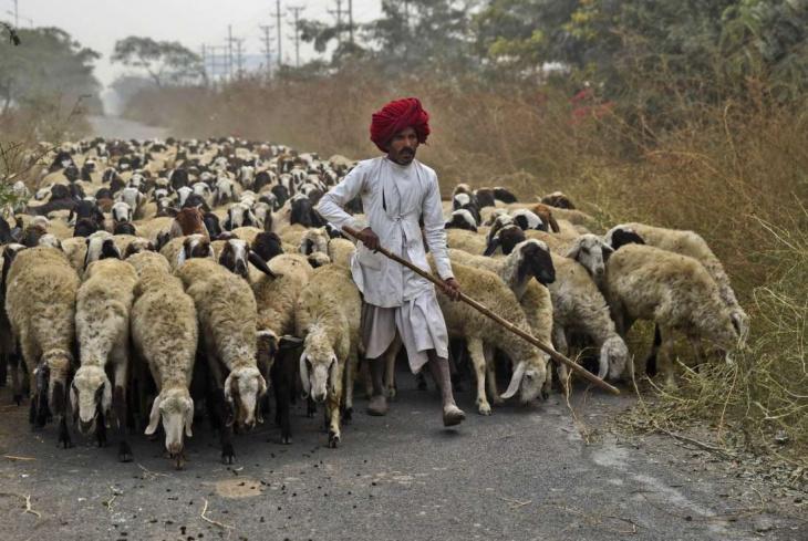 Жизнь в Индия, глазами прохожих