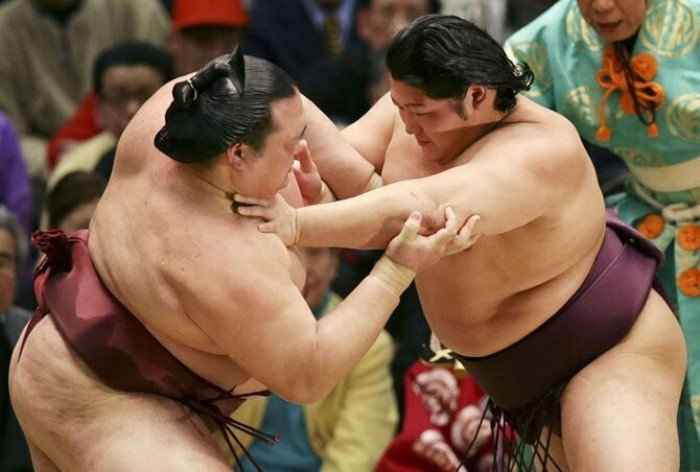10 интересных фактов, которые вы не знали о борьбе — Сумо