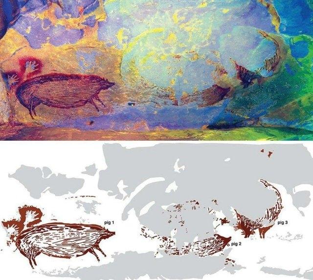 Древнейшие наскальные рисунки свиней обнаружены в Индонезии