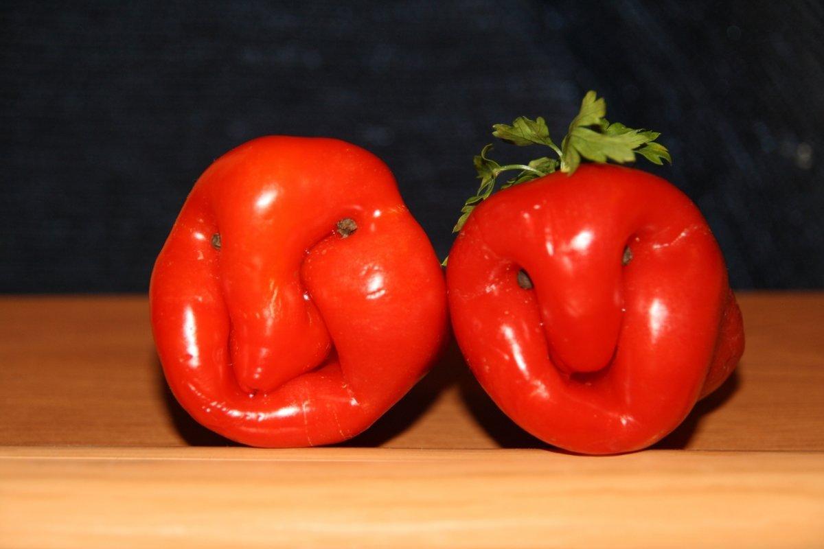 Овощ ли это? Подборка фотографий корнеплодов, похожих на всёчто угодно, но только не на овощ