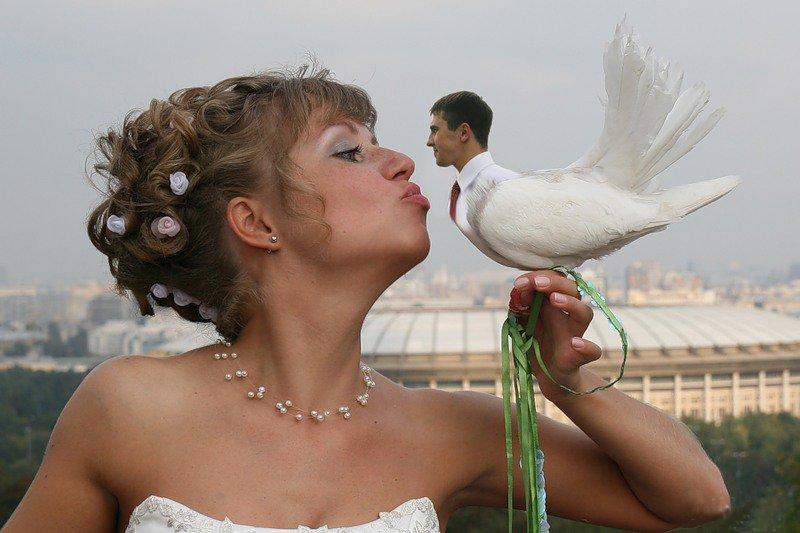 Ох уж эта свадьба: подборка самых запоминающихся фото