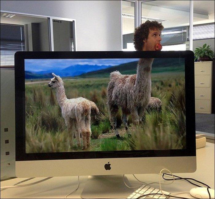 Подборка необычных рабочих экранов ноутбука