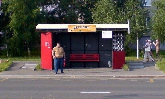 Подборка забавных названий автобусных остановок