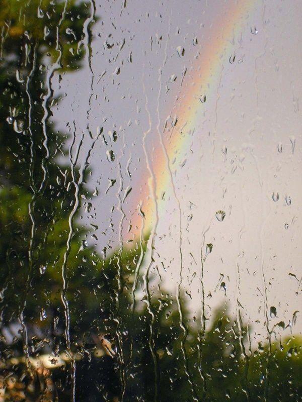 Подборка фото дождливой погоды