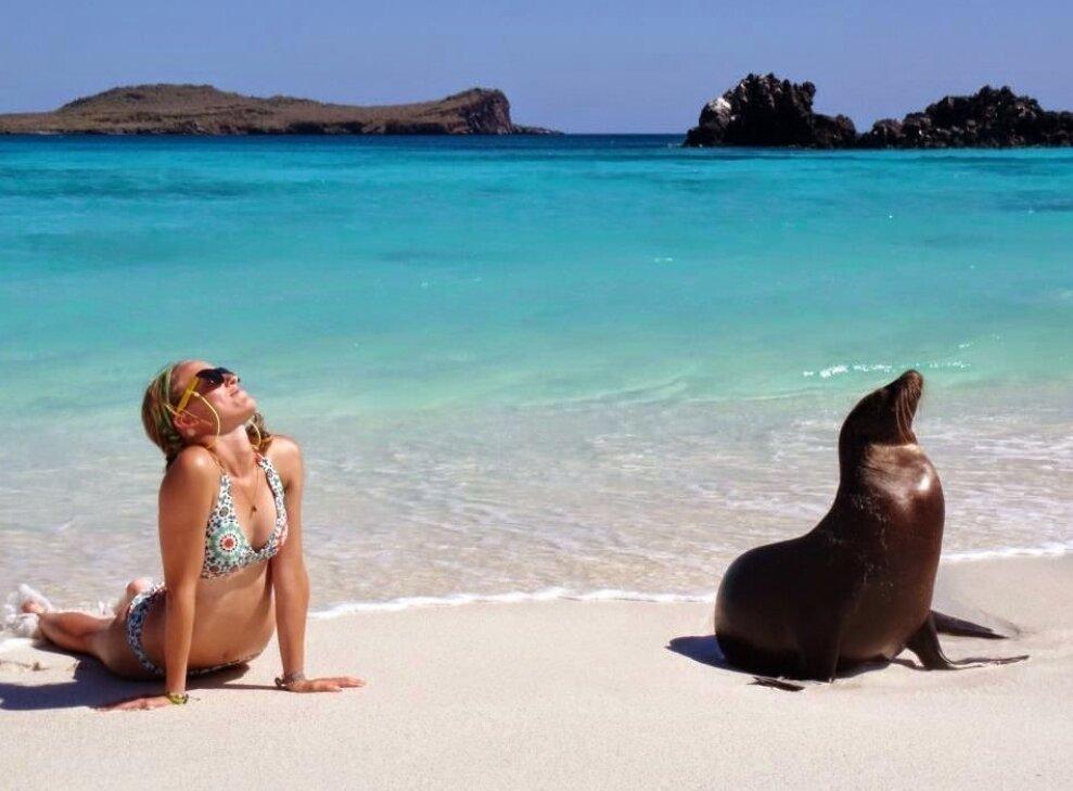 Подборка забавных фото с пляжа