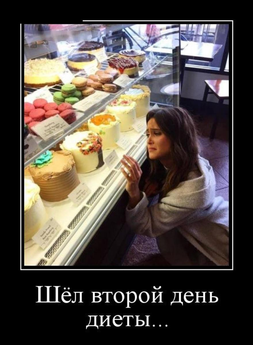 Подборка фото приколов про диету