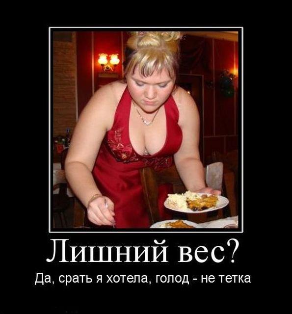 Аппетитные толстушки