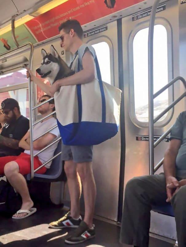 В метро как дома