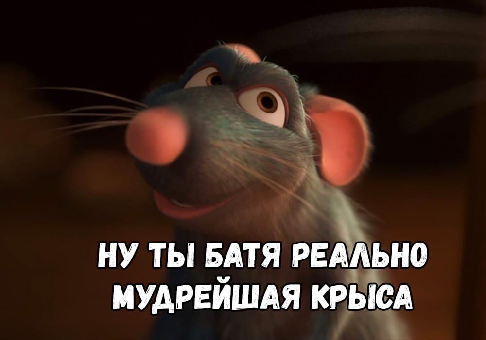 Крысиный совет