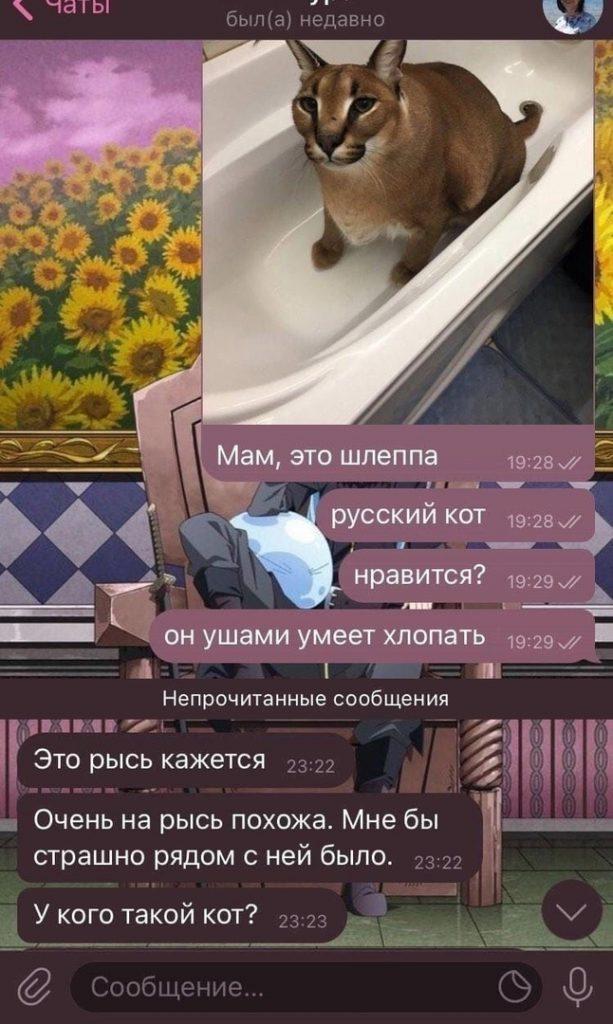 Реакция родителей на каракала