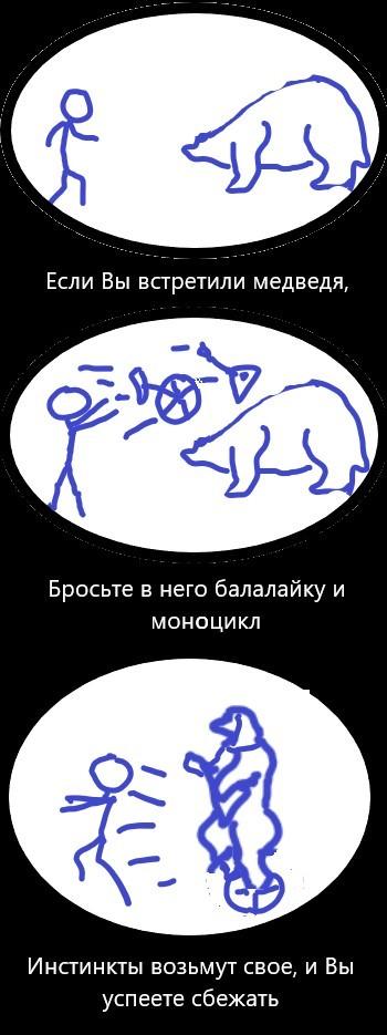 Когда встретил медведя