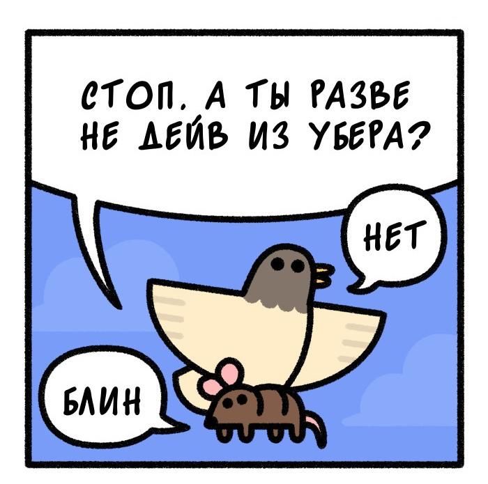 Птичья личность