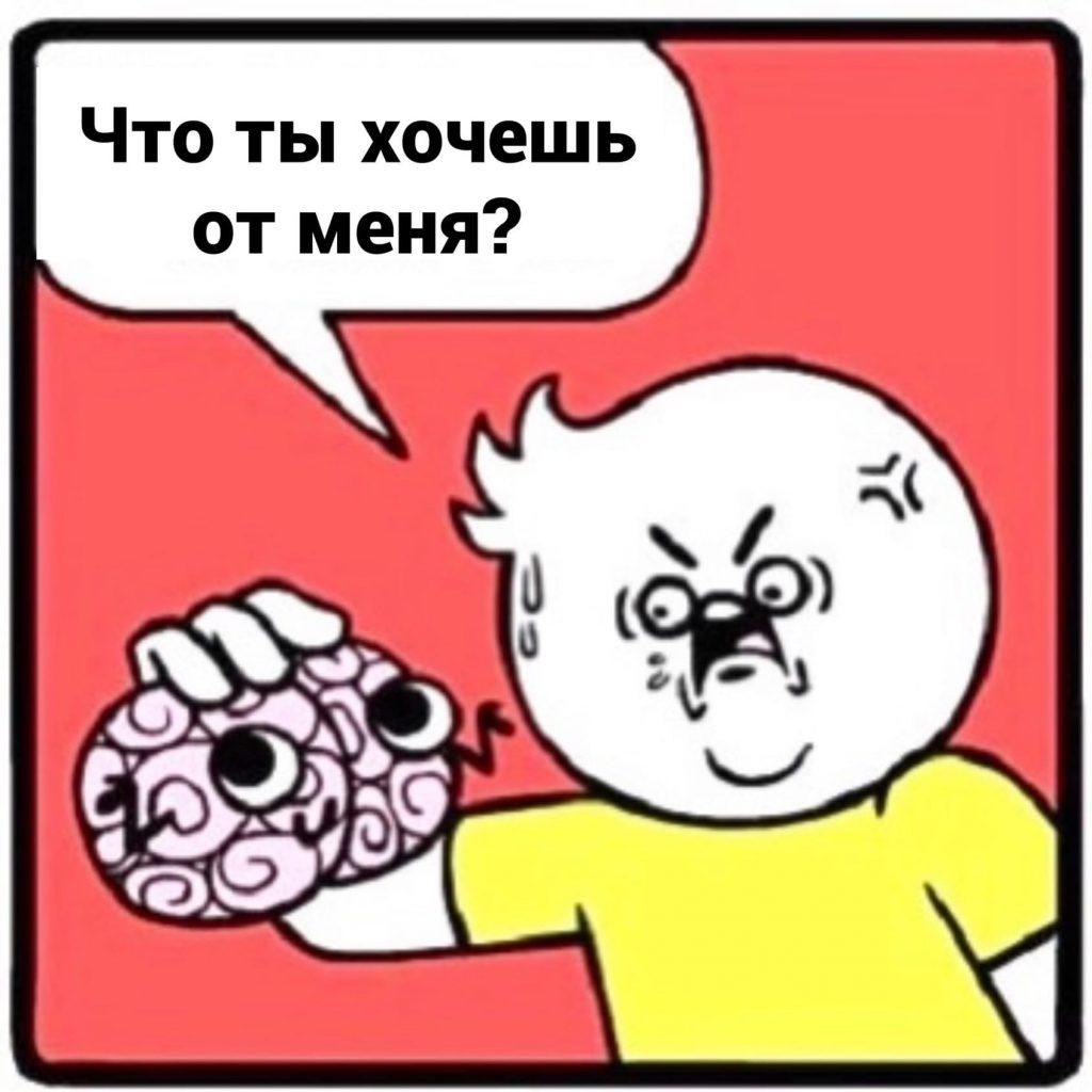 Беседы с головой