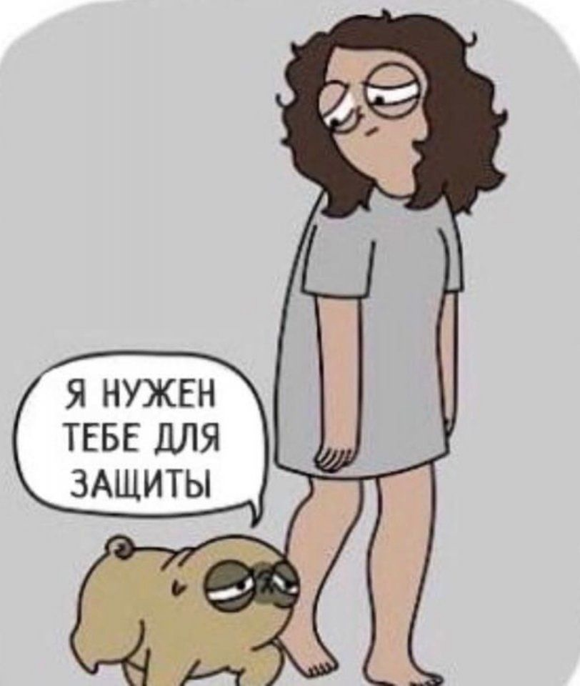 Собаки вам не то, что кошки