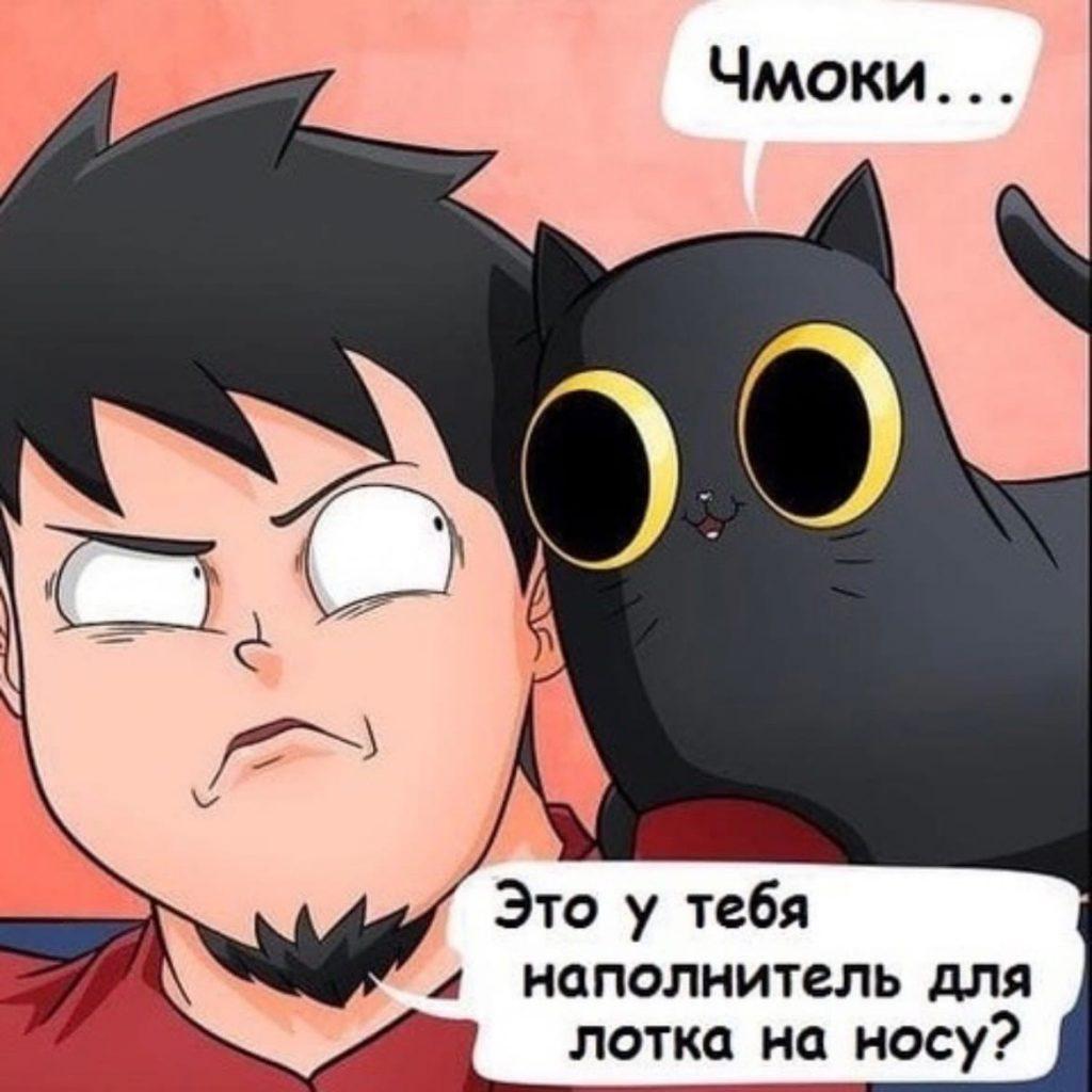 Мусорный кот
