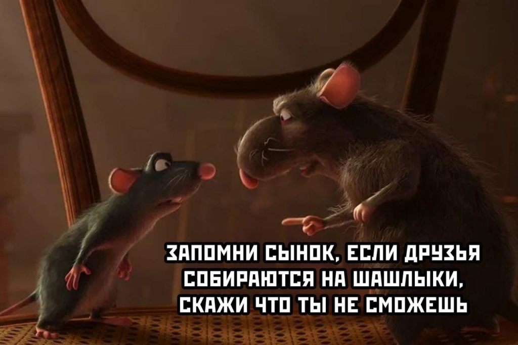 Крысиные советы