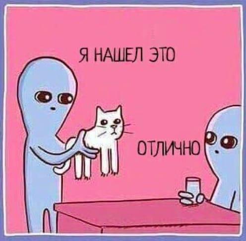 Котик и НЛО