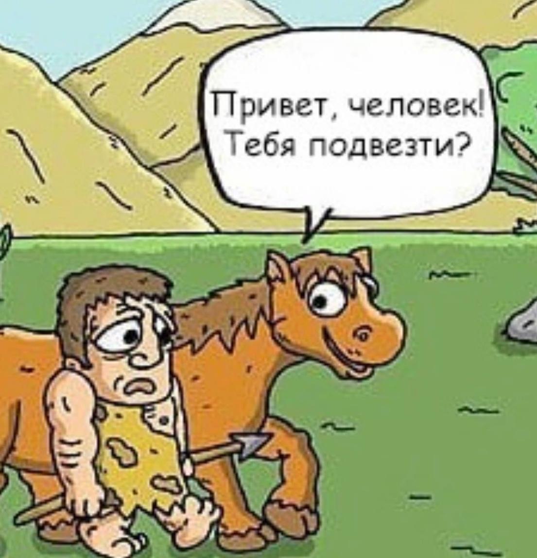 История приручения лошадей
