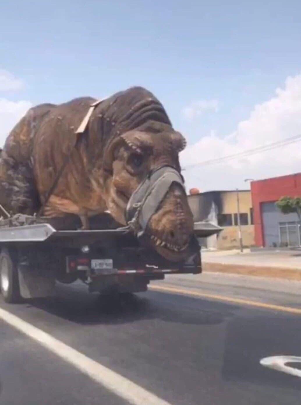 Динозавр или парень