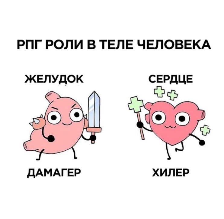 Роли органов в теле человека