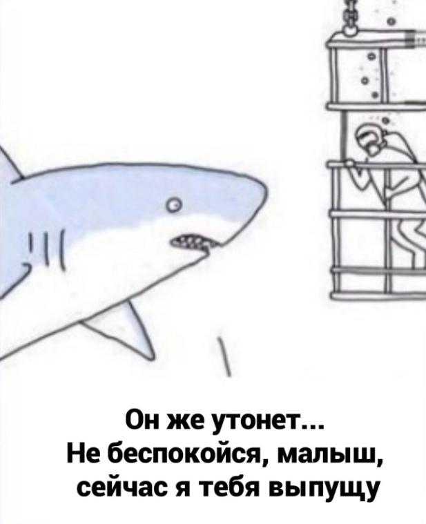 Особый вид акул
