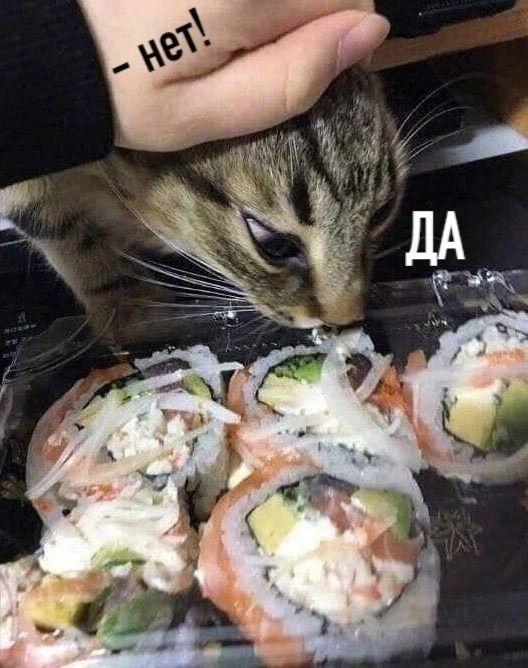 Василий знает толк в еде