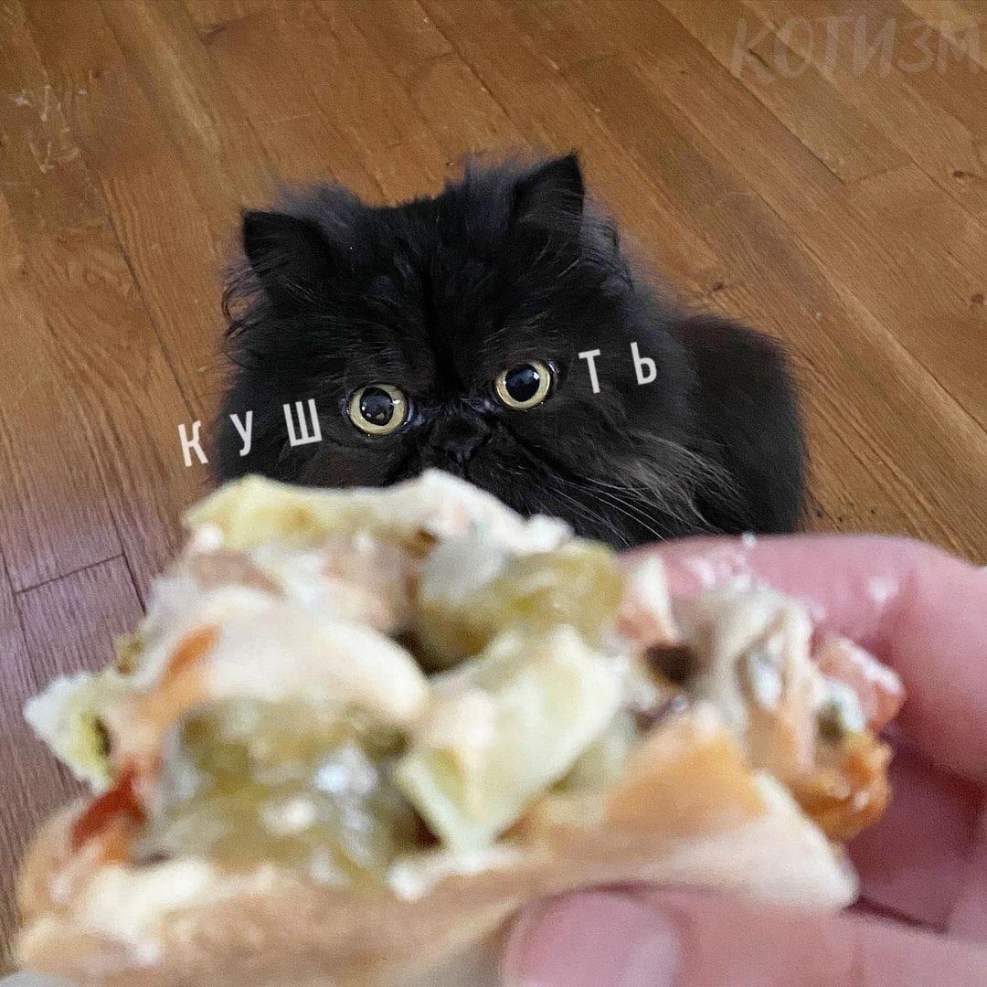 Кушать!