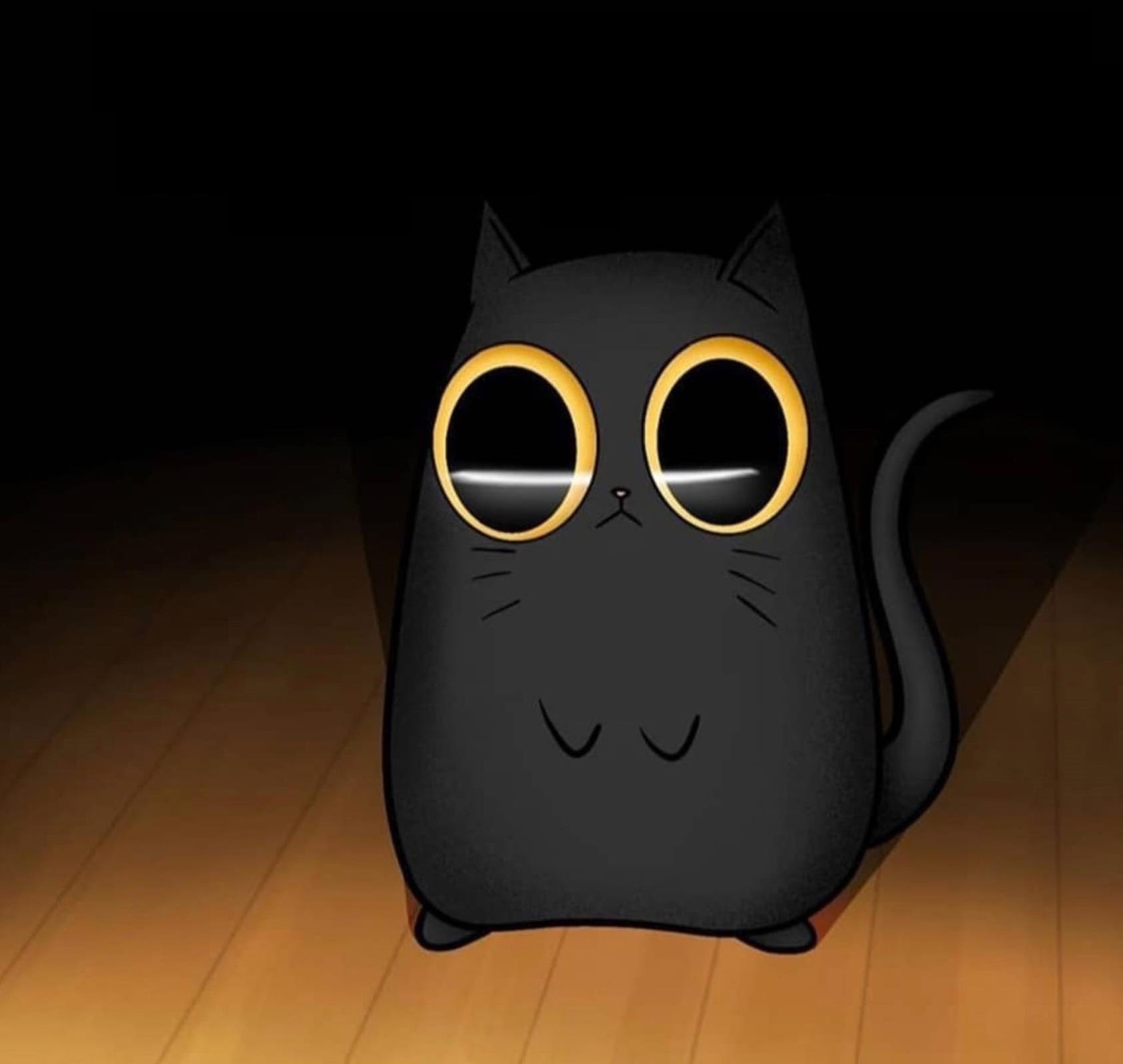 Интересующийся кот