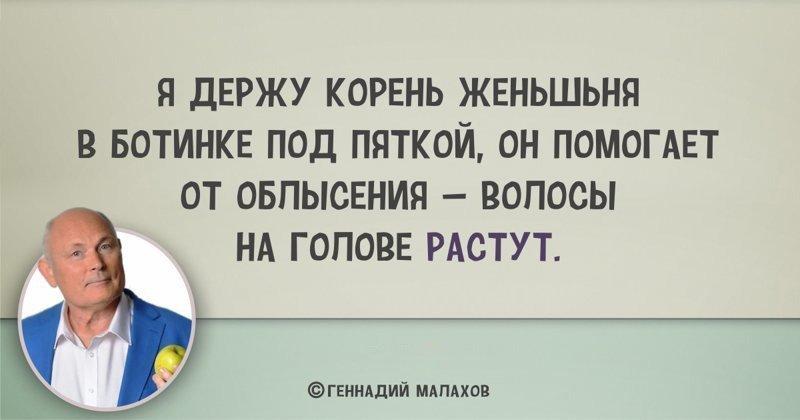 5 высказываний Геннадия Малахова, которые могут сломать мозг и насмешить до слёз