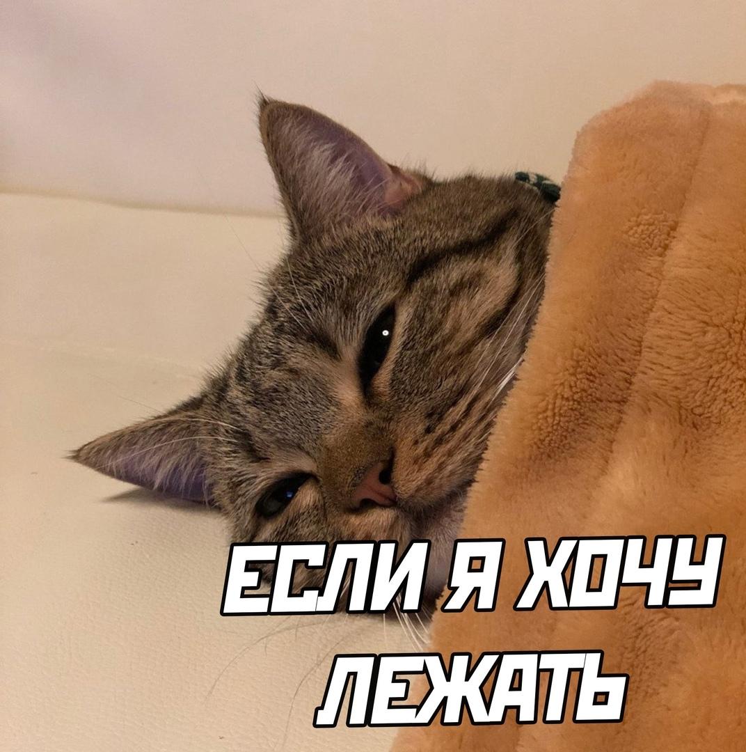 Будь как я