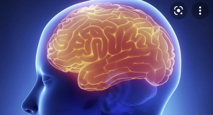 Хочешь быть умным и активным, начни с правильно сна