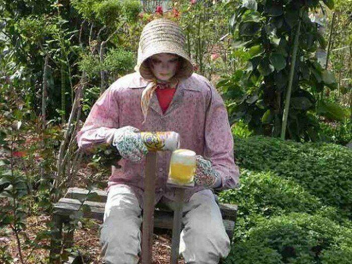 Страхи на огороде и даче