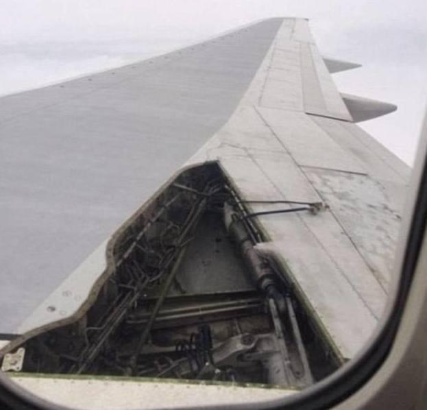 Безумство в самолете