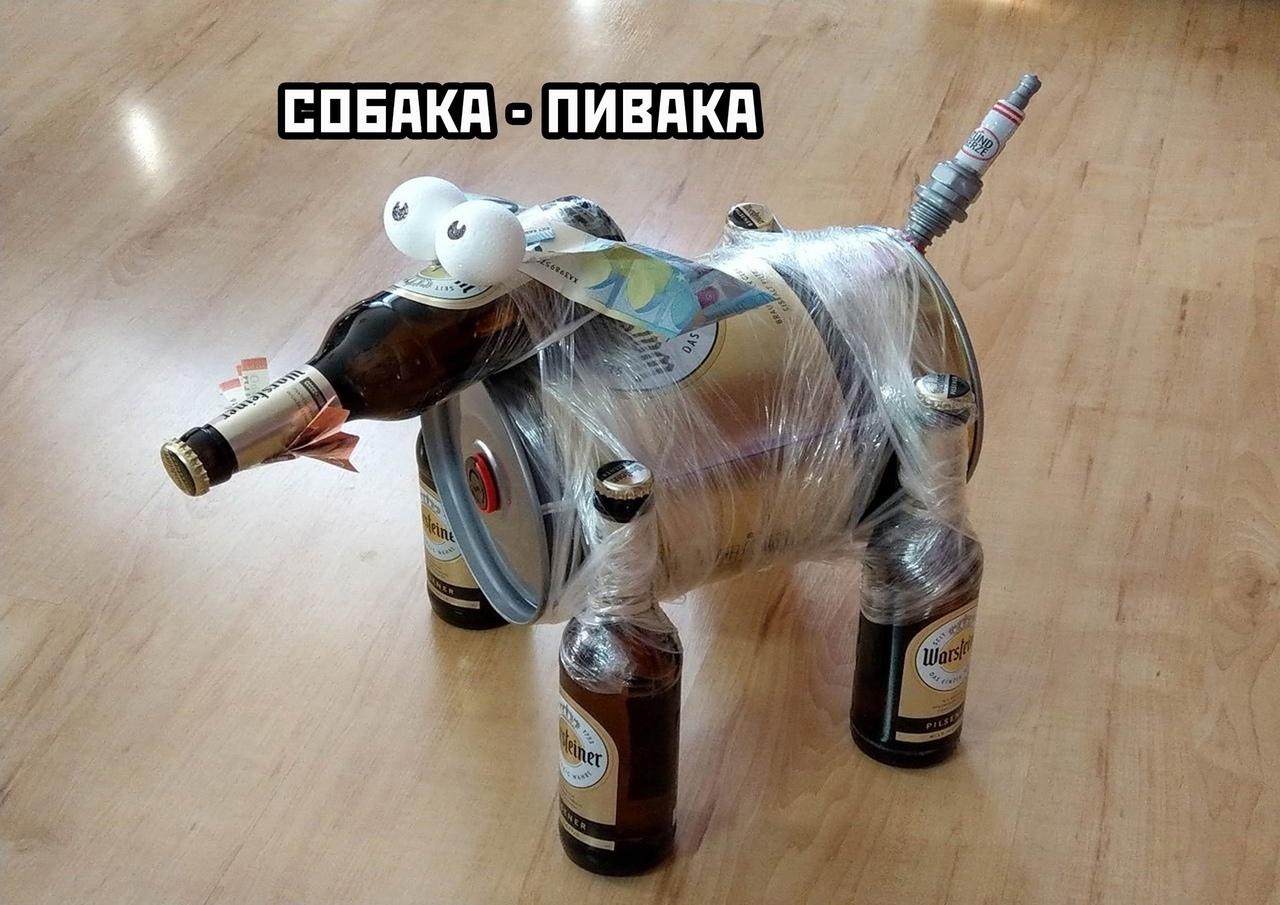 Собака-пивака