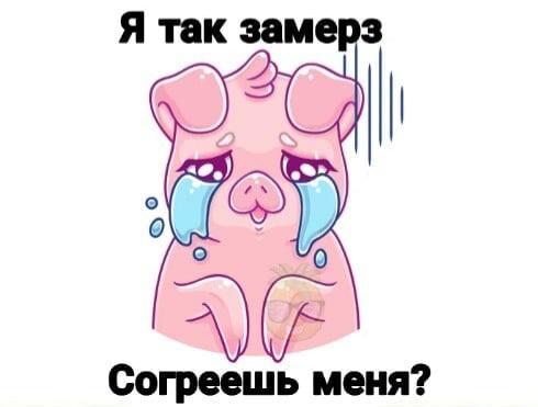 Согреваю свинку