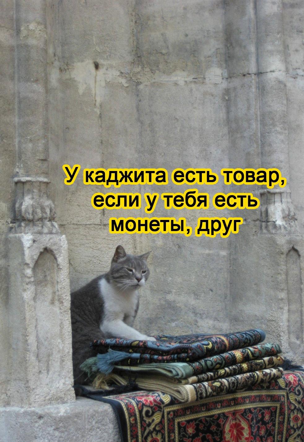 Как благодаря скайриму появились узбеки