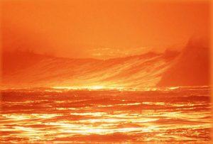 Оранжевый — любимый цвет