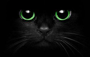 Черный — траурный цвет?