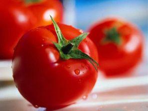 История появления помидоров