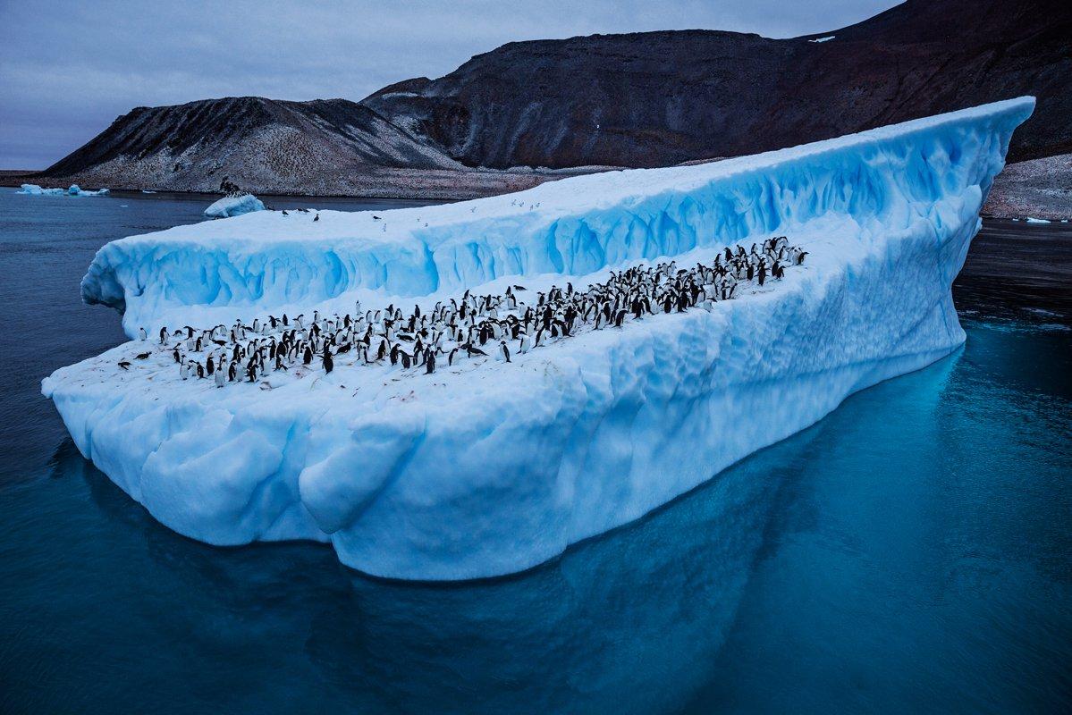 Река в Антарктиде