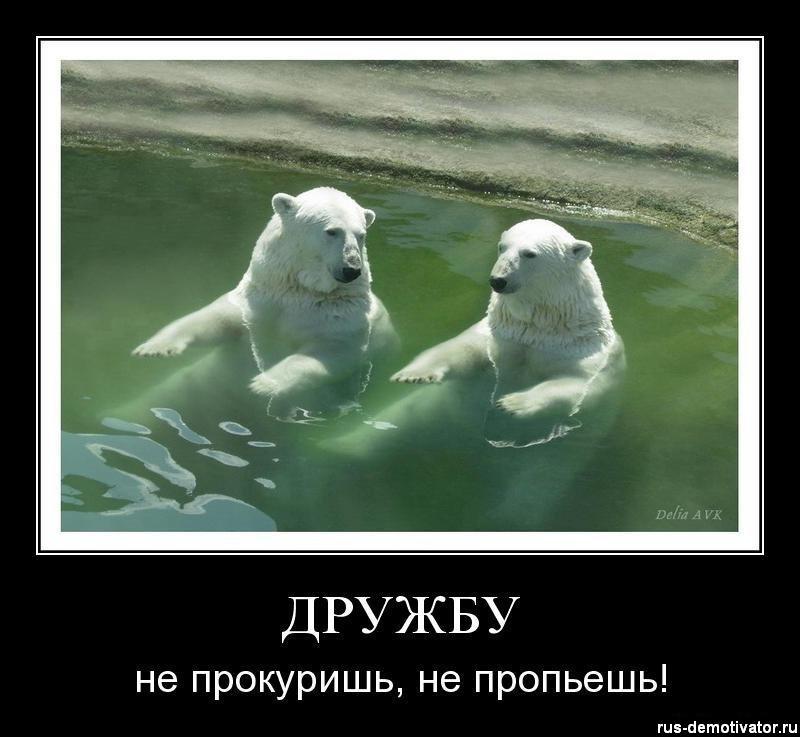 Приколы про дружбу!
