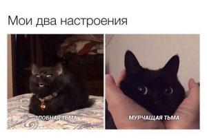 Мои два настроения