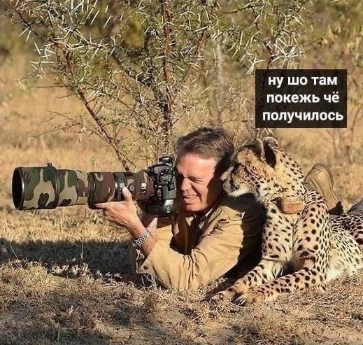 Будни фотографа