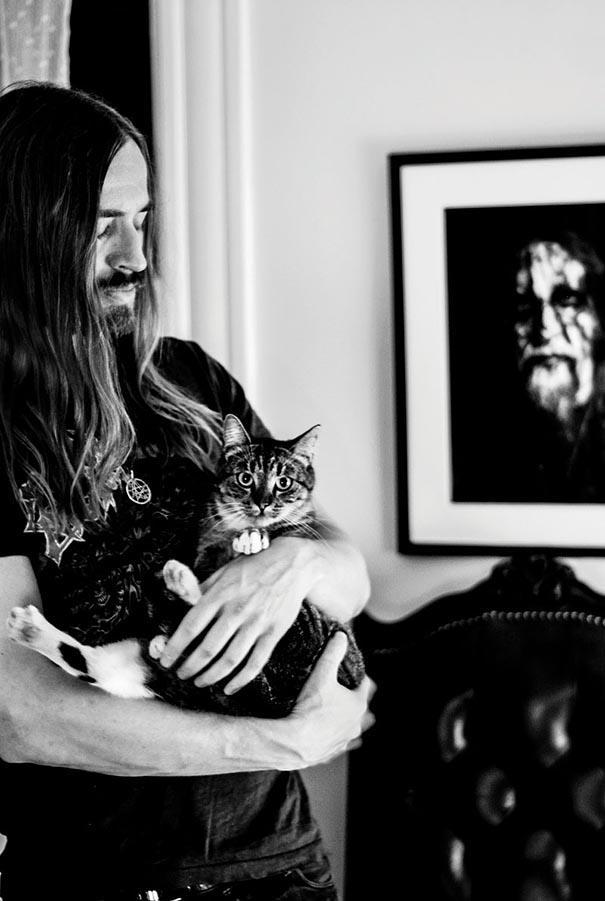 Котики и их Металлисты