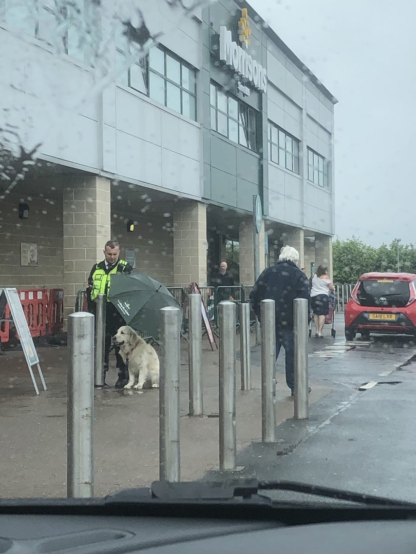 Охранник укрыл пса от дождя