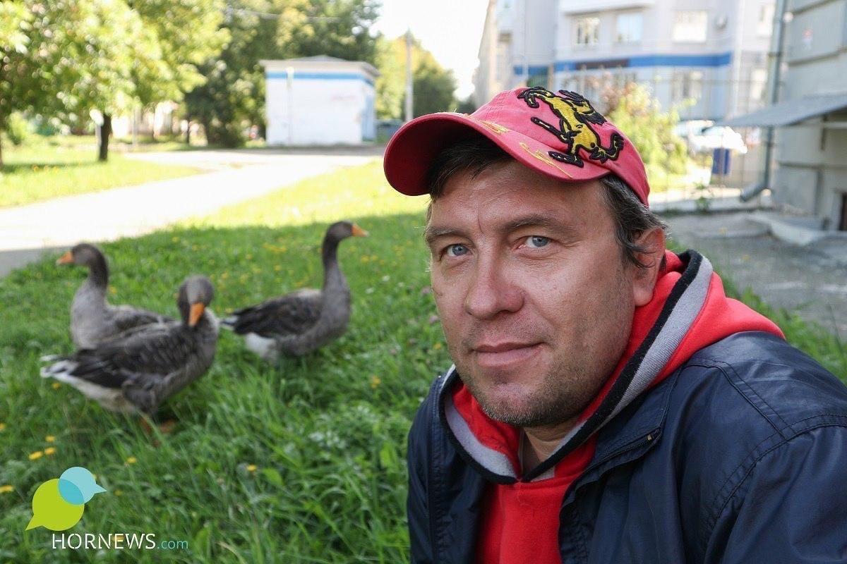 Житель Челябинска всегда мечтал завести питомцев и завёл — троих гусей