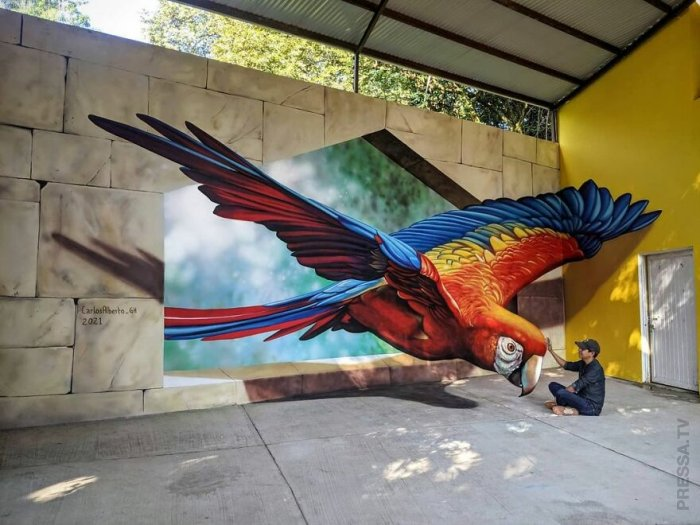 Уличные картины мексиканского художника